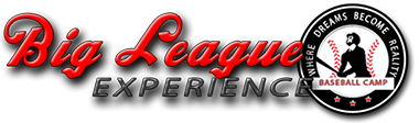 Image result for big league experience